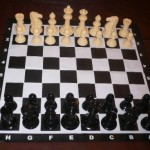 Garden Chess Set 206mm King and Vinyl Mat